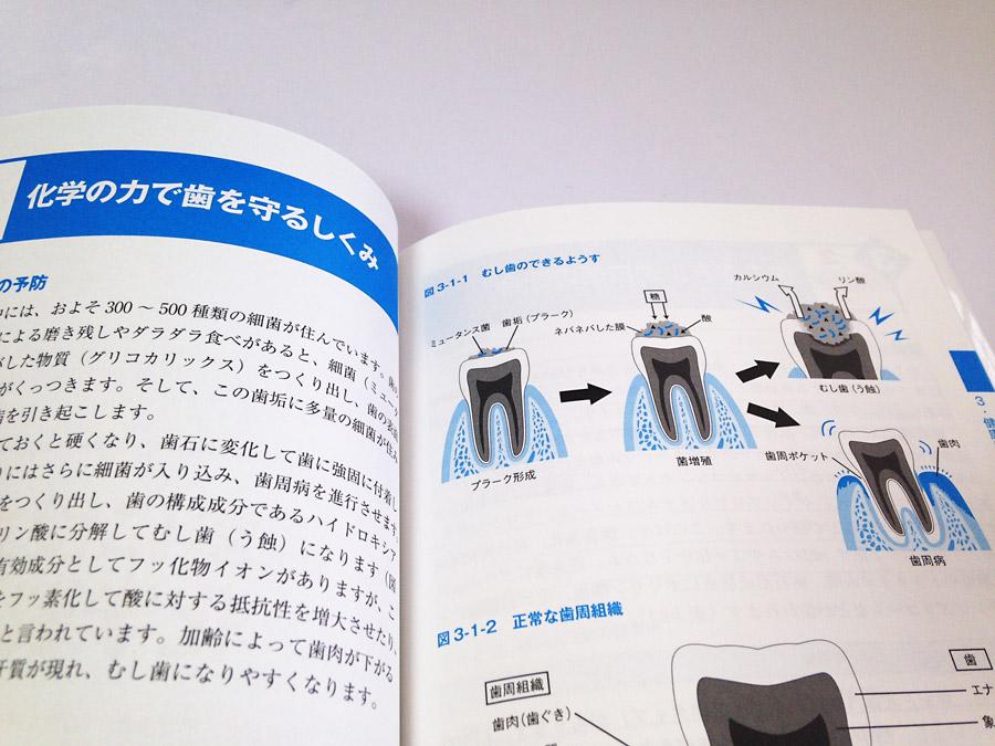 皮膚や歯などの構造イラスト制作例 書籍用図解イラスト制作例